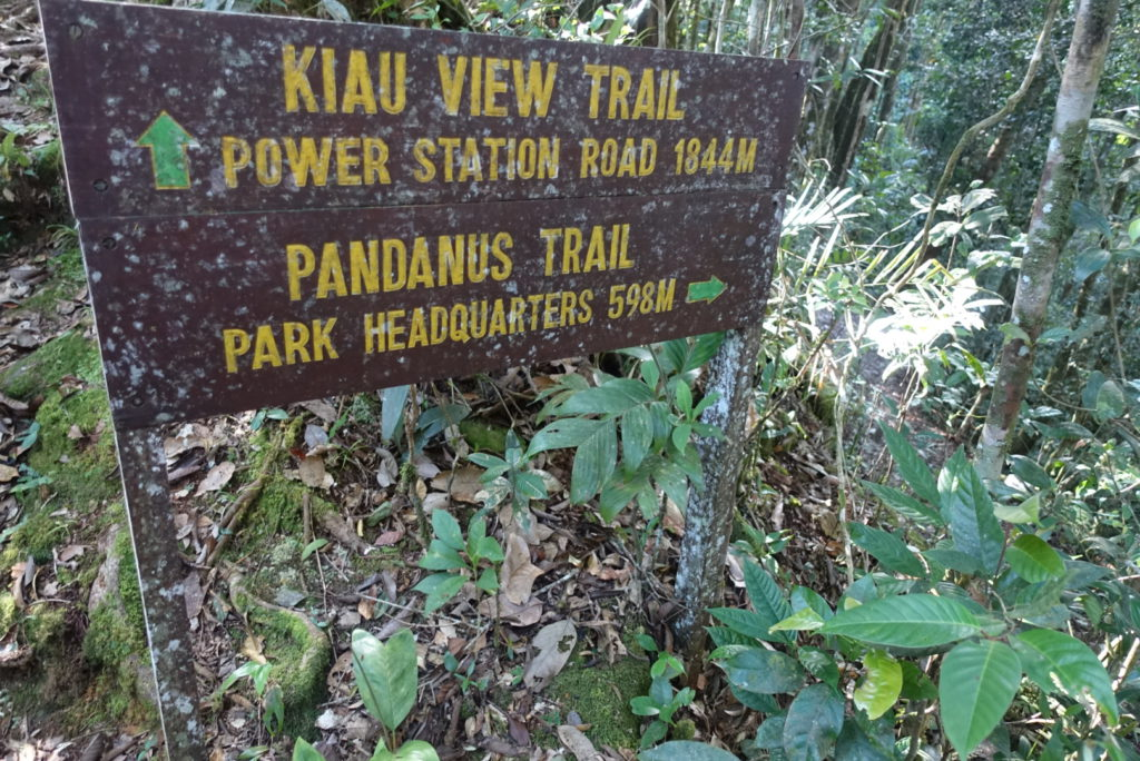 Kiau View Trail
